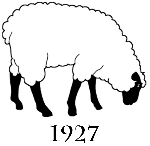 cropped sheep with date
